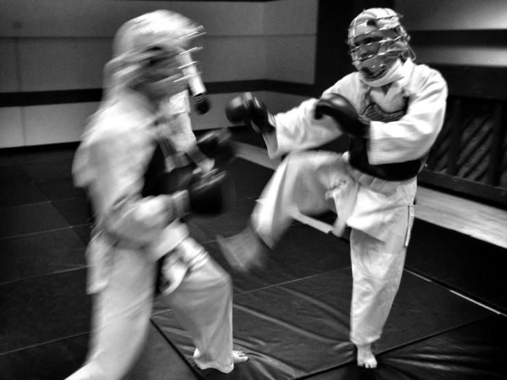 Rising kick in Nippon Kempo